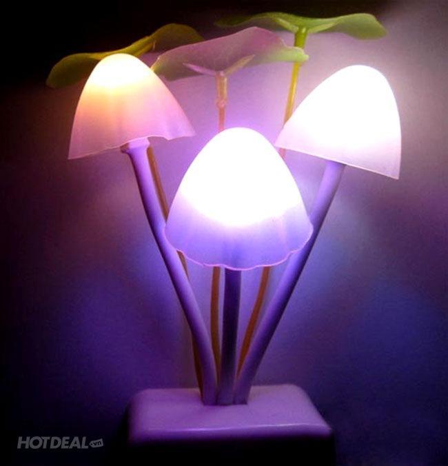 Đèn ngủ hình nấm cảm ứng tự động  avatar