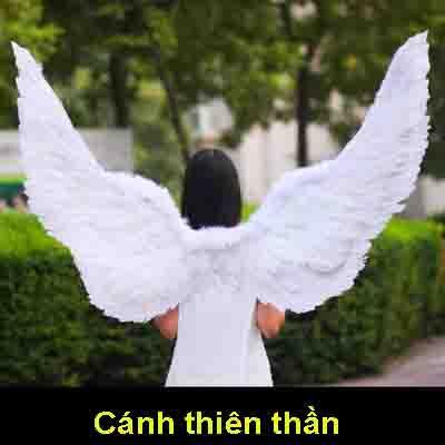 hóa trang cánh thiên thần