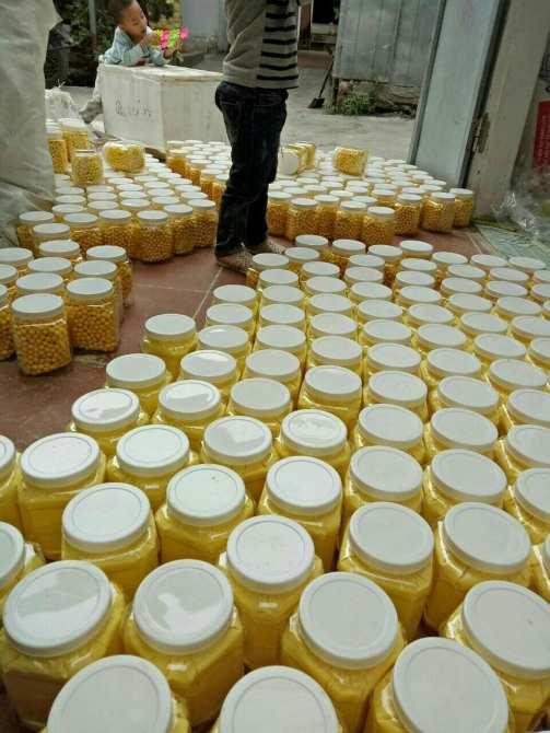 Hình ảnh Viên tinh nghệ mật ong Giảm Câm 500gr Bảo Nam