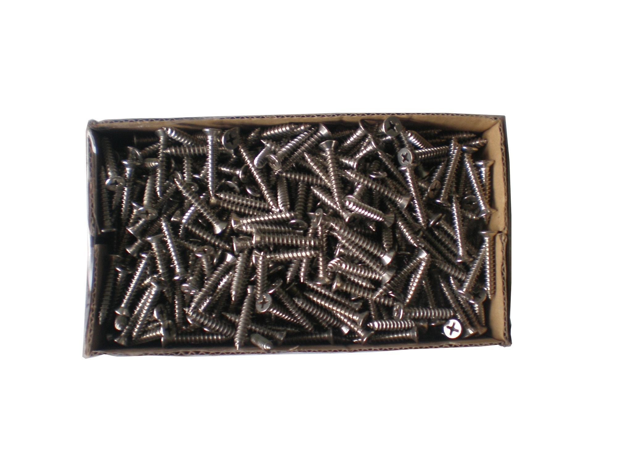 Bộ 100 vít inox 4x25mm