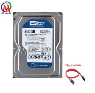 Ổ CỨNG PC 250GB BH 24 THÁNG Tặng Cáp Sata thumbnail