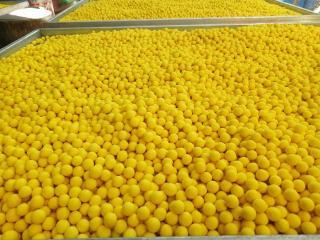 Viên tinh nghệ mật ong chăm sóc hệ tiêu hóa 500gr Bảo Nam thumbnail