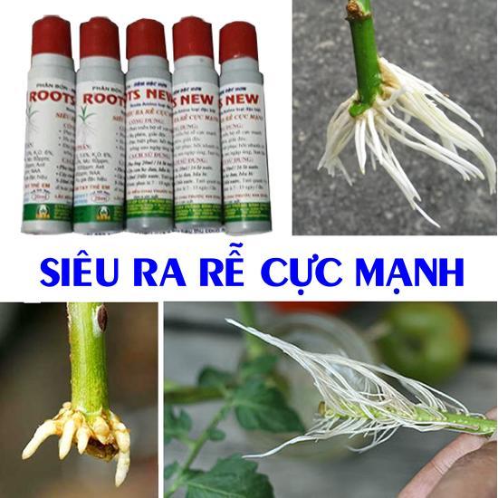 Bộ 5 chai Siêu ra rễ Cực mạnh (20ml)