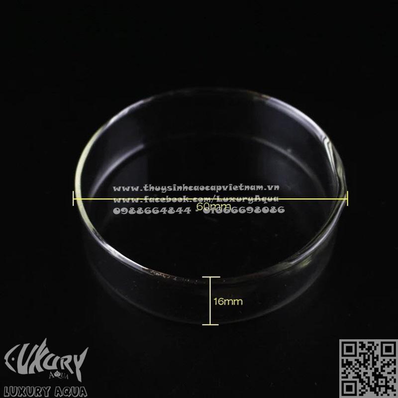 Đĩa thủy tinh cho tép ăn 6cm