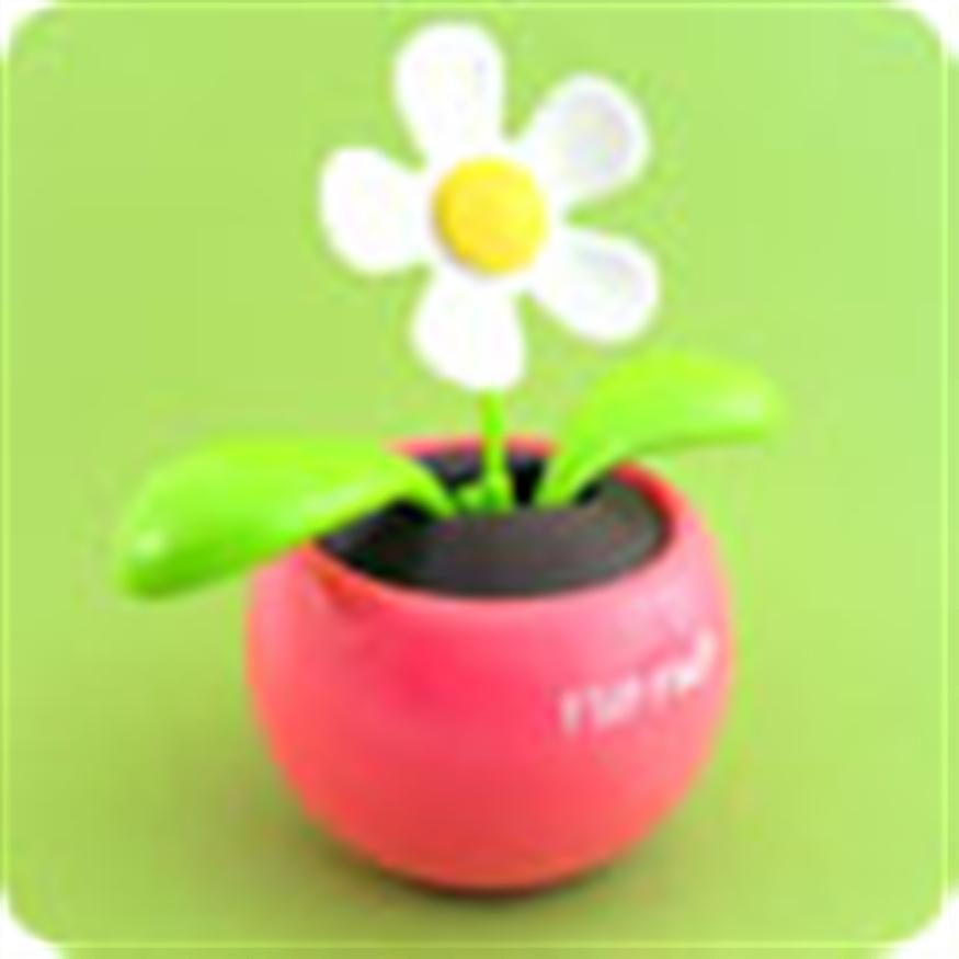 CHẬU cây HOA trang trí ô tô, bàn làm việc NĂNG LƯỢNG MẶT TRỜI , cây hoa nhảy múa flip flap