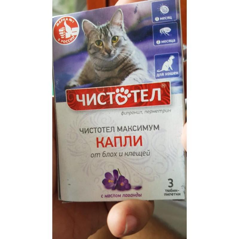 Nhỏ gáy trị ve rận cho mèo hộp 3 tuýp nhập Nga