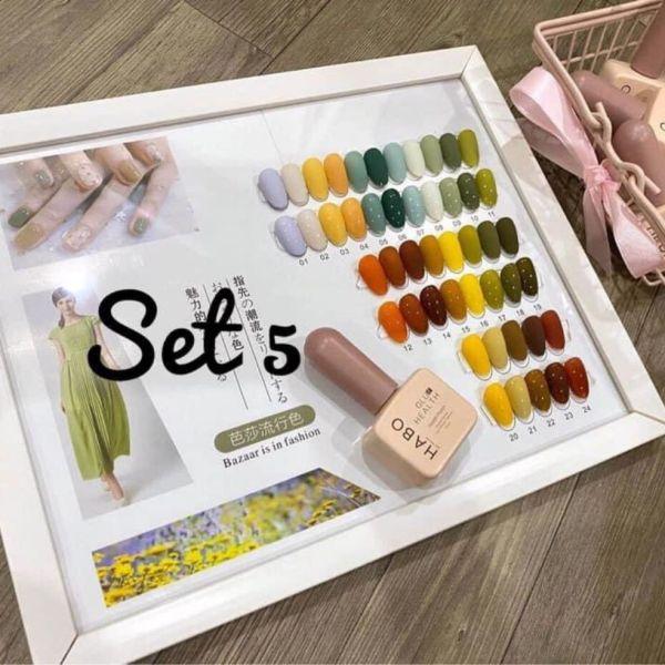 Set 24 chai dòng sơn Habo ( tặng bảng màu) giá rẻ