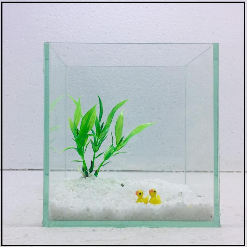 Bể cá mini để bàn 15cm - Tặng phụ kiện