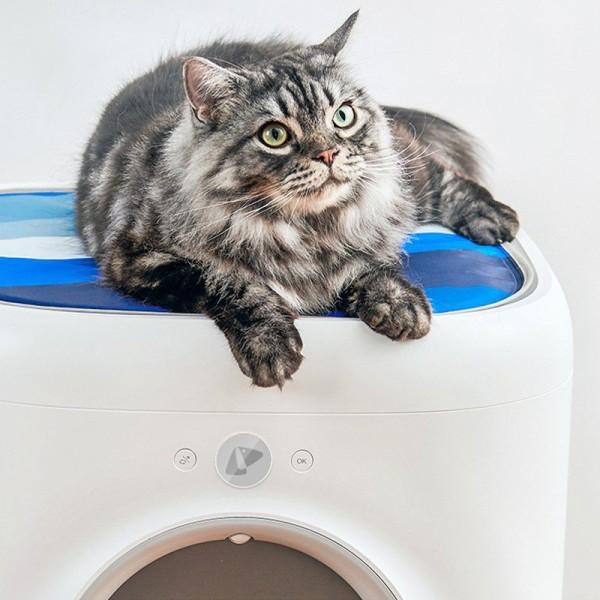Thảm gel lạnh lót máy Pura X Petkit cho mèo nằm mát, tản nhiệt