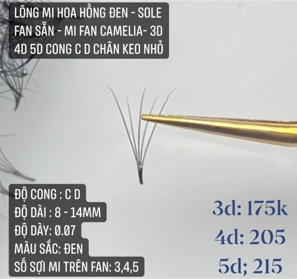 Lông Mi HOA HỒNG ĐEN - Sole Fan Sẵn - Mi fan Camelia- 3D 4D 5D cong C D chân keo nhỏ giá rẻ