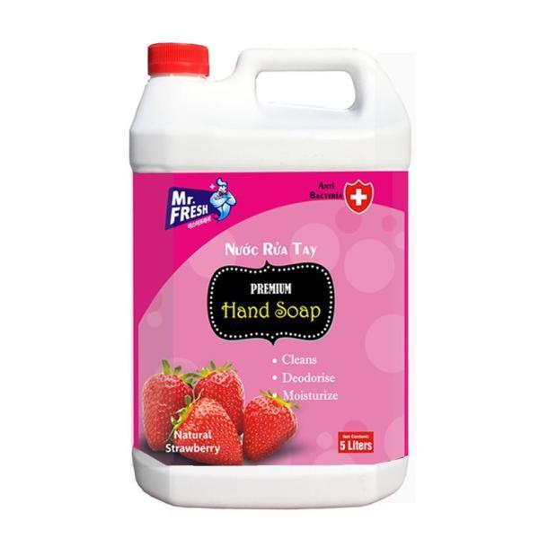 Can Nước (Sữa) rửa tay tiệt trùng Premium Hand Soap Mr Fresh Hàn Quốc 5L GSG280 giá rẻ