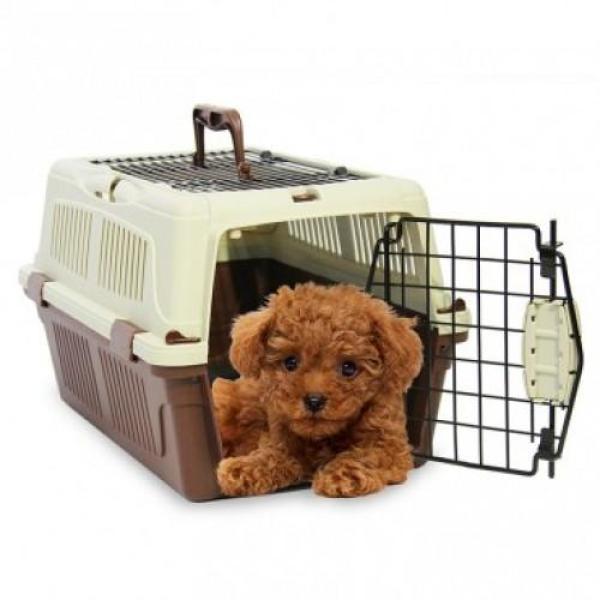 STVX - Lồng hàng không ( 4711769) lồng vận chuyển chó mèo hàng không (Màu ngẫu nhiên)-HP10572TC / lồng chó/ lồng mèo / đựng chó mèo