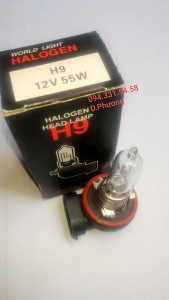 Bóng H9 12V 55W. Bóng đèn ô tô World Light. Chuyên các loại bóng đèn halogen giá sỉ