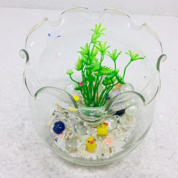 Bể cá mini để bàn tai bèo - Tặng phụ kiện