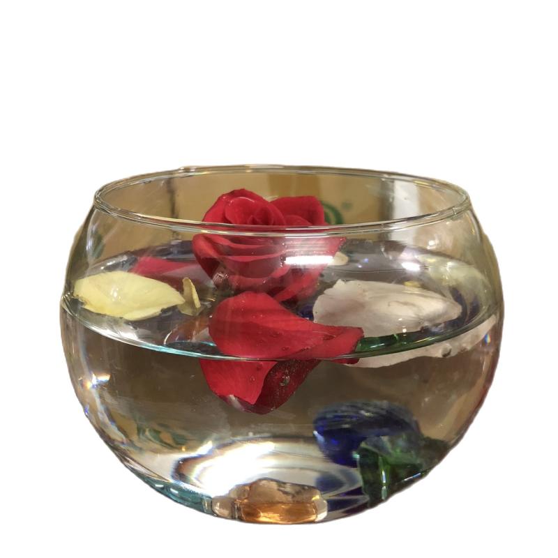 Bình thủy tinh nuôi cá để bàn, Hồ cá thủy tinh mini,Bình thủy tinh trồng cây thủy sinh mẫu T01