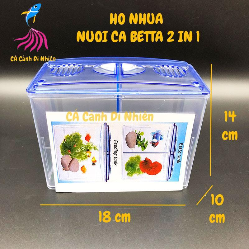 Bể nhựa nuôi cá Betta mini 2 in 1, hồ cá để bàn size 18x14x10 cm