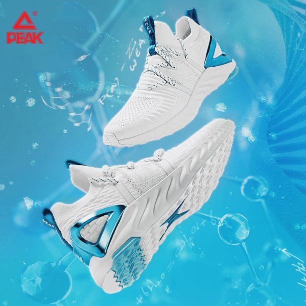 Giày chạy bộ Nam PEAK Running TAICHI 1.0 Plus E92577H giá rẻ