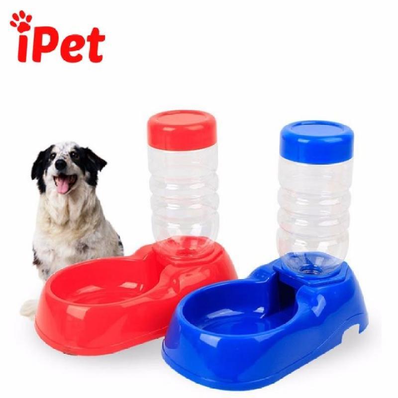 Bát uống kèm bình cho chó mèo - iPet Shop