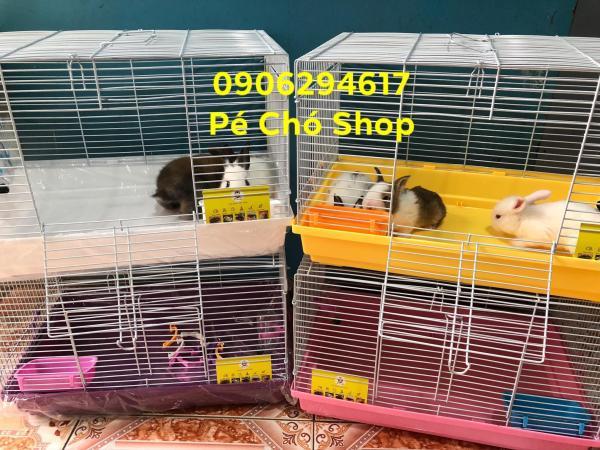 Lồng size đại (47-30-30) cho sóc,thỏ,bọ,nhím,hamster có phụ kiện.