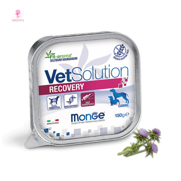 Pate phục hồi chức năng cho chó bệnh - Monge VetSolution Recovery