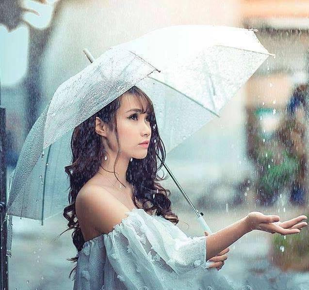 Ô trong suốt đi mưa sợi nhựa cao cấp