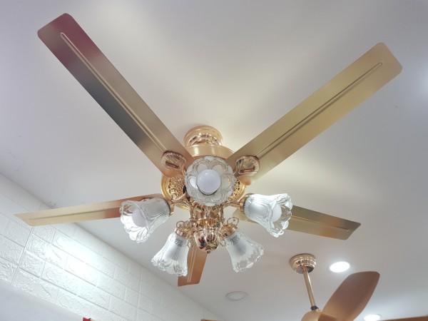 Quạt trần đèn cánh thẳng QTDG580y quạt trần phòng khách, quạt trần có đèn