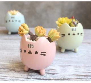 Chậu Sen đá gốm sứ 8.5x7.5 cm Mèo con dễ thương (Chưa bao gồm cây) thumbnail
