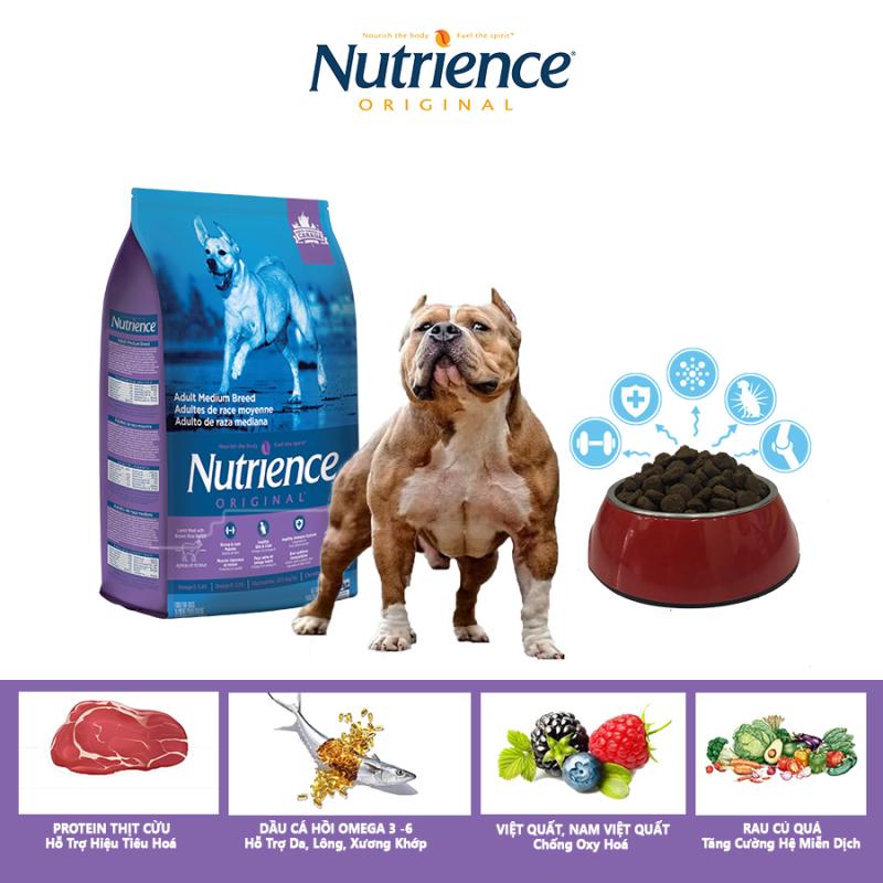 Thức Ăn Cho Chó Bully Nutrience Original Phát Triển Cơ Bắp, Xương Sụn Cơ Khớp, Hệ Miễn Dịch, Hệ Tiêu Hóa Khỏe Mạnh, Da Lông Bóng Mượt - Thịt Cừu, Rau Củ Và Trái Cây Tự Nhiên