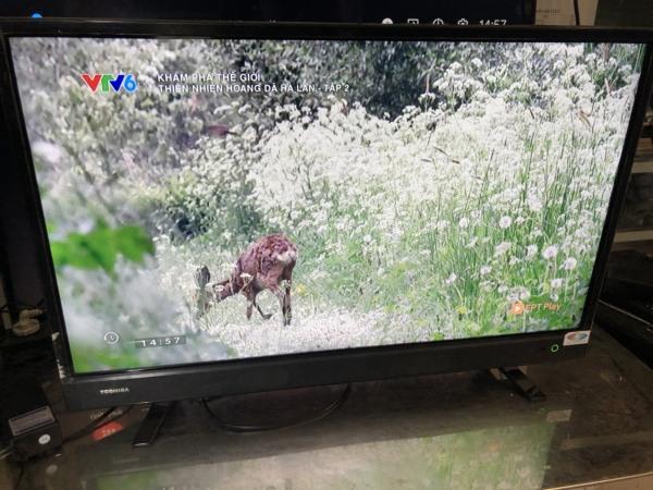 Bảng giá Tivi Toshiba 32 inch 32L3750
