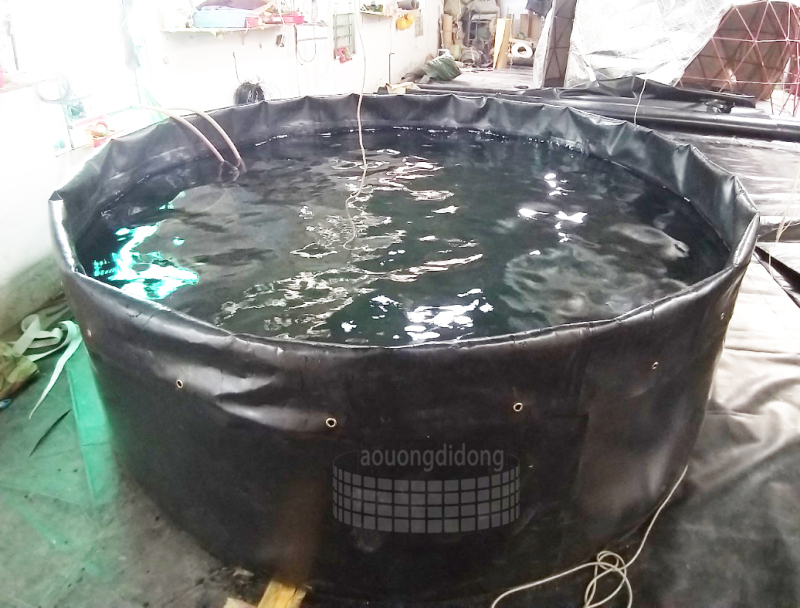 Ao lót bạt nuôi tôm cá D3