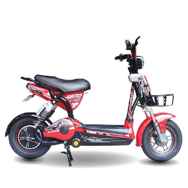 Xe đạp điện Everest EM9 12A 2019