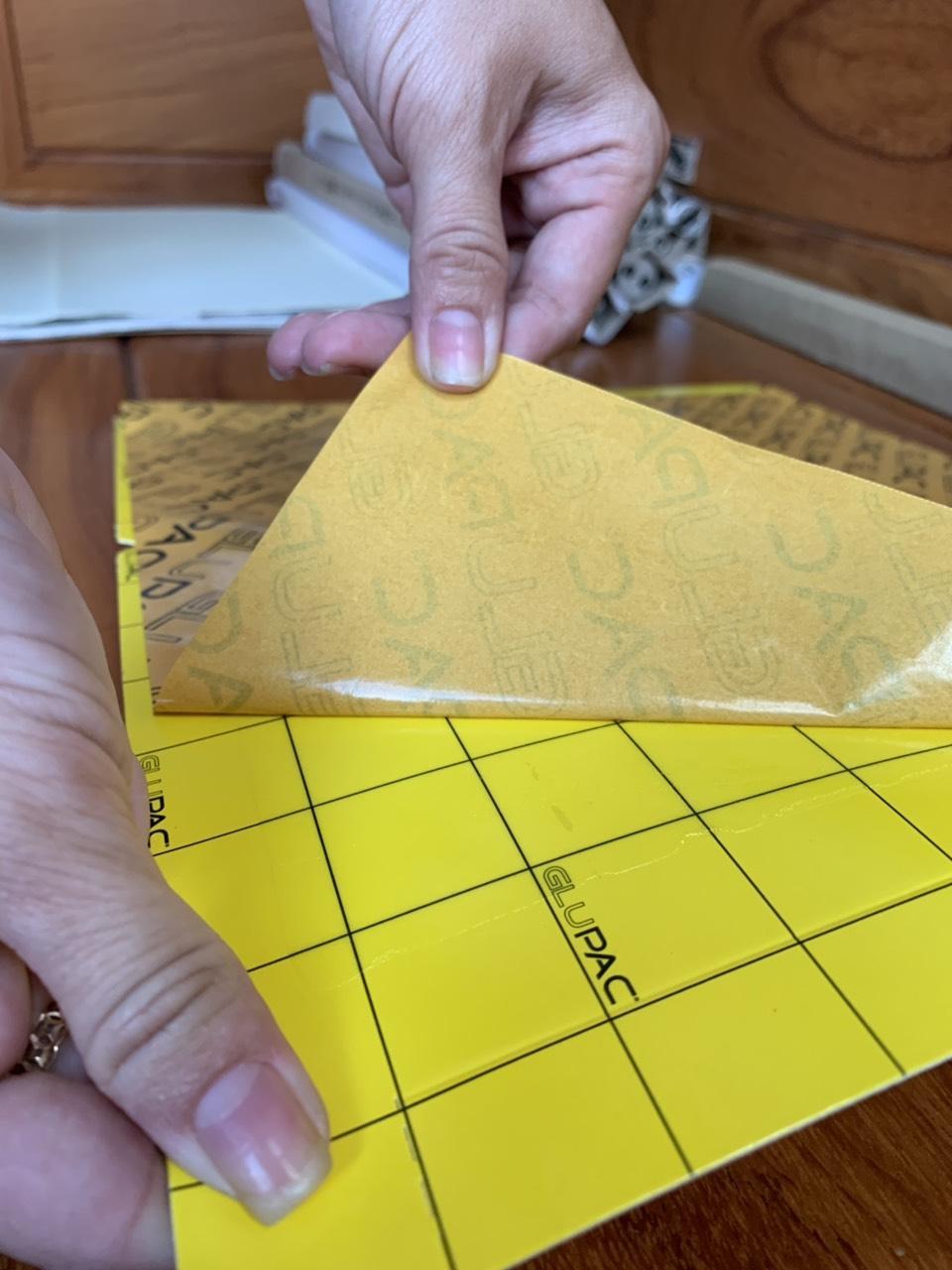 Tấm keo dính côn trùng nền vàng