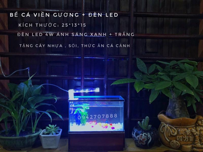 Bể cá mini viền gương sáng kèm đèn led 4w(tặng cây, sỏi, thức ăn)