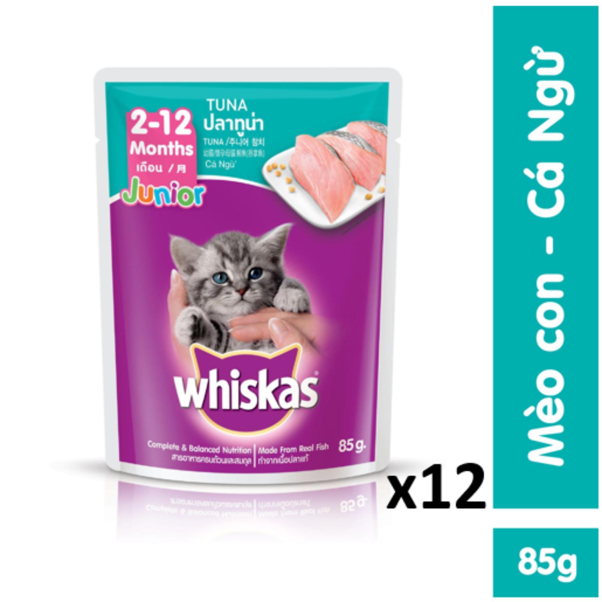 Bộ 12 Túi Thức ăn Mèo Con Vị Cá Ngừ 85g Đang Có Ưu Đãi
