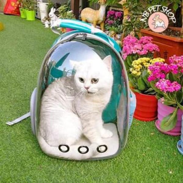 Balo trong suốt vận chuyển chó mèo cao cấp, Balo Phi Hành Gia Trong Suốt