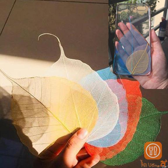 Mua Lá Bồ Đề Ép Nhựa Ốp Điện Thoại (Combo 2 miếng lớn, nhỏ) - Cầu bình an, may mắn