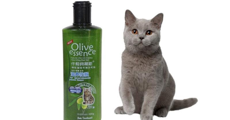 Sữa tắm Olive Essence cho chó mèo 450g