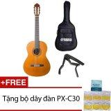 Bán Bộ Đan Guitar Classic Yamaha C40 Bao Đan Va Capo Tặng Bộ Day Đan Px C30 Rẻ