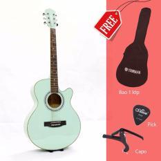Bán Đan Guitar Acoustic Pearl Fg150P None Có Thương Hiệu