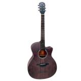 Mã Khuyến Mại Đan Guitar Acoustic Rex A12Cfg Hà Nội