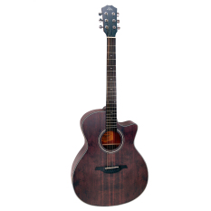 Mua Đan Guitar Acoustic Rex A12Cfg Rex Trực Tuyến