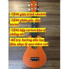 Đan Ukulele Gỗ Us 1000 Limited Edition Hồ Chí Minh