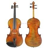 Bán Đan Violin Van Ep Có Thương Hiệu Nguyên
