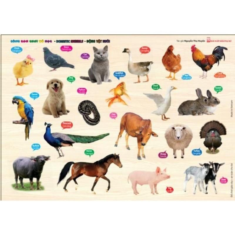 Mua Đồ chơi giáo dục nhận biết tên các động vật nuôi