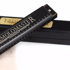 Mua Ken Harmonica Cổ Điển Cao Cấp 24 Lỗ Tremolomaster M Kongsheng Mới Nhất