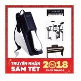 Mua Pedal Đa Năng Cherub Wtb 005 Cho Đan Organ Piano Trống Điện Tử Ban Đạp Tạo Tiếng Vang Sustain Keyboard Pedal Trong Hồ Chí Minh