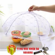 Hình ảnh 2 Lồng bàn đậy thức ăn bằng lưới ( tặng móc khóa da )