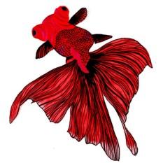 Cá Thêu Miếng Dán May Quần Áo Táo Diy Dán Ren Viền Cổ-quốc tế