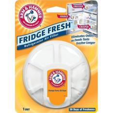 Hình ảnh Hộp khử mùi tủ lạnh Fridge Fresh của Arm & Hammer, Made in USA - Hàng nhập khẩu