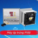Máy ấp trứng gà mini Ánh Dương P100 - tặng 01 thuốc úm gà